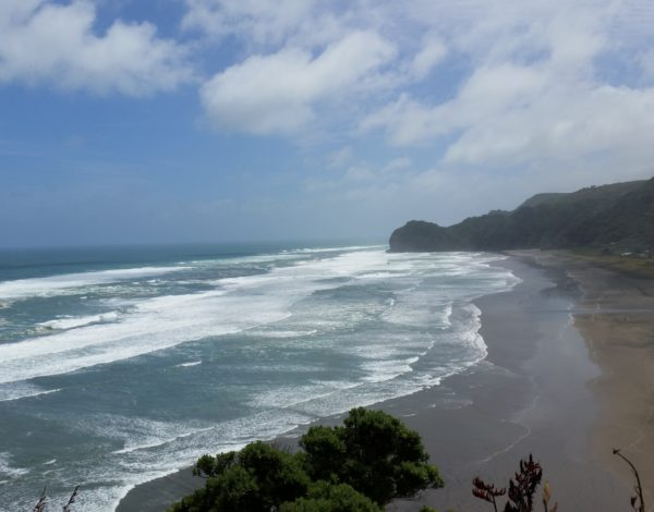 A Day Trip To Piha w/ Auckland 360